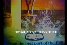 13160_13327_birdseye.mov