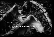 13163_SFMA7699_werewolf_shot.mov