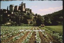 13165_24161_medieval_times3.mov