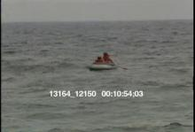 13164_12150_dolphins3.mov