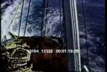 13164_12332_dolphins1.mov