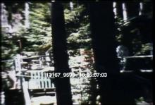 13167_9599_armstrong_redwoods.mov