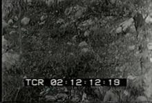 9477_WW2_stretcher2.mov
