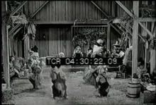 12560_dog_dance.mov