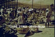 13152_21962_Haitians4.mov