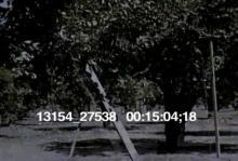 13154_27538_fruit_pickers15.mov