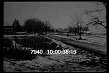 7940_car_crash_tree.mov