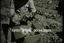 13151_27448_railroads15.mov