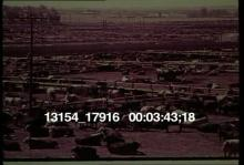 13154_17916_pollution_4.mov