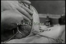8680_Brains!.mov