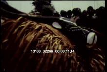 13163_32266_tribal_dance2.mov