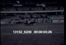 13152_6239_rodeo3.mov