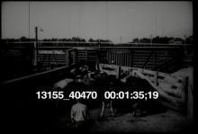 13155_40470_industry1.mov
