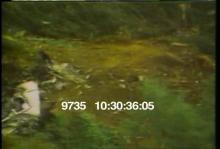 9735_Crash_Site_3.mov