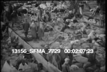 13156_SFMA_7729_miss_flood2.mov