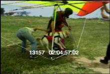 13157_hang_gliding_dog14.mov
