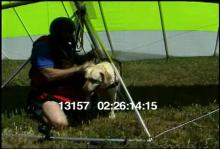 13157_hang_gliding_dog23.mov