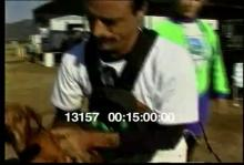 13157_skydiving_dog10.mov