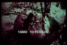 10880_arrow_fishing.mov