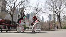 13174_001_central_park_carriage.mov