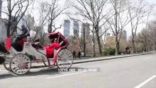 13174_002_central_park_carriage.mov