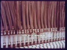 13174_40771_carpet2.mov