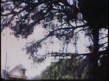 13175_41291_disneyland_sixties8.mov