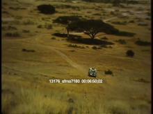 13176_sfma7180_african_safari4.mov