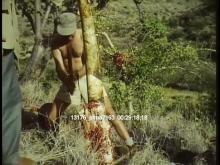 13176_sfma7163_africa_safari12.mov